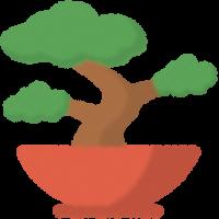 :bonsai: